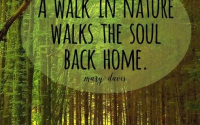 Wash Away Life's Stresses by Soaking in Nature