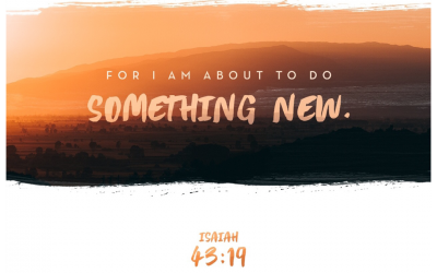 Your Something New is Coming!